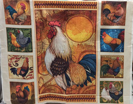 PATCH AMERICANO PANEL GALLO