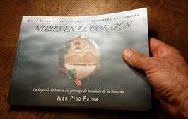 """Ejemplar físico del libro """"nubes en el corazón"""""""