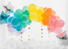 BIO Ballons