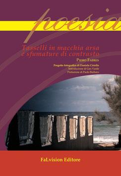 Tasselli in macchia arsa e sfumature di contrasto di Piero Fabris
