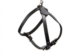 Leather harness JUNIOR