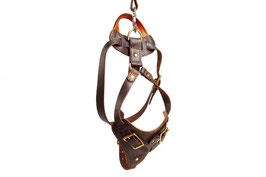 "Leather Harness ""Attack"" with handle, Brass"