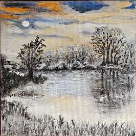 Mondschein im Winter