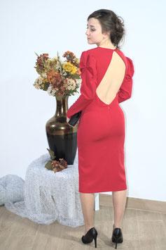 Modelo SARA