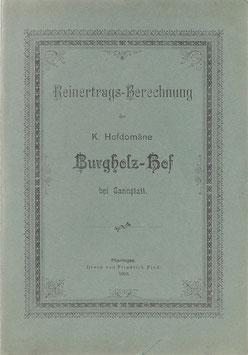 Reinertrags-Berechnung der K. Hofdomäne Burgholz-Hof bei Cannstatt