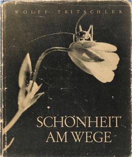 Wolff, Paul und Tritschler, Alfred - Schönheit am Wege