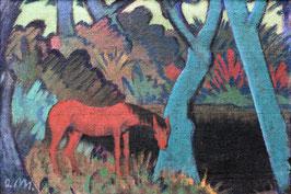 Zigeunerpferd am schwarzen Wasser, auf Posterpapier