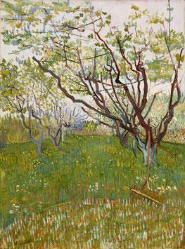 Blühender Obstgarten, auf Leinwand