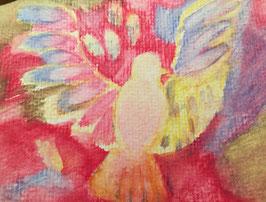 Zaubervogel - Hochglanzphoto auf Klappkarte C6 in verschiedenen Farben inkl. Umschlag, cellophaniert