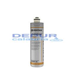 Filtro Everpure 2DC