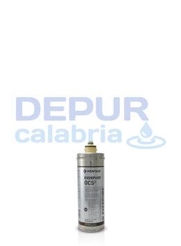 Filtro Everpure OCS2