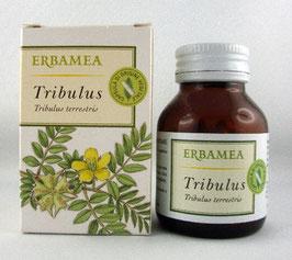 TRIBULUS - CAPSULE VEGETALI
