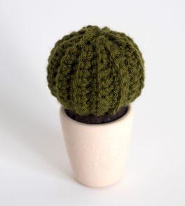 Cactus en laine et son pot, MUMMY
