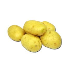 Patata Torribas Monalisa