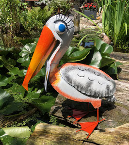 Pelikan sucht einen neuen Garten