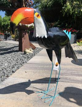 Tukan, Paradiesvogel. Großer Hingucker für Wohnraum und Garten