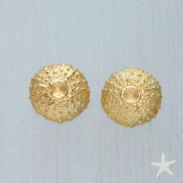 Seeigel Ohrstecker , vergoldet, 10mm