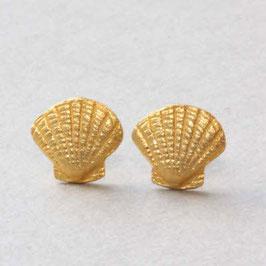 Muschel Ohrstecker vergoldet, 8mm,