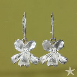 Ohrhänger Feilchen, Silber, 15mm Blüte,