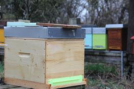 Bienenvolk - Patenschaft