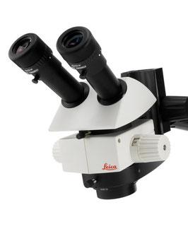 Mikroskop M50 von Leica
