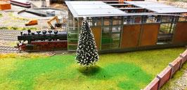 Baum Nr. 508