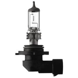 Car1 Glühlampe H10 42W  12V