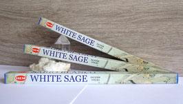 White sage (Hem), encens en bâtonnets