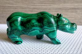 Malachite, hippopotame
