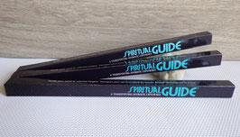 Spiritual Guide (Padmini), encens en bâtonnets
