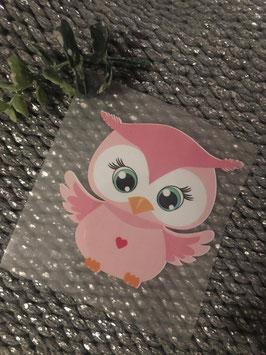 Bügelbild little Owl