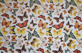Schmetterling Motiv