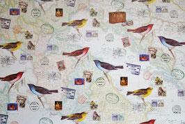 Vogel Motiv 1