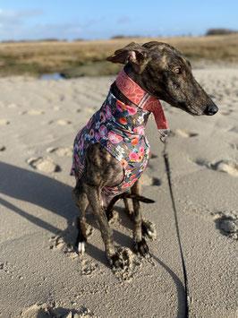 HundeShirt ROSEGREY, Baumwolljersey angerauht
