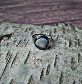 Edelstahl Ring 12 mm mit weißer Muschel auf blauem Glitzer