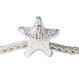 INTERCALAIRE étoile de mer