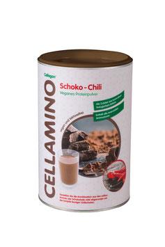 Veganes Eiweißpulver 500 g (zur Zeit nur in Vanille lieferbar)