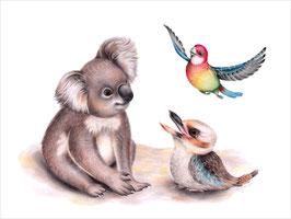 Koala, Kookaburra and Rosella Print