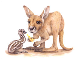 Red Roo & Baby Emu