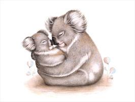 Koala Cuddles Print