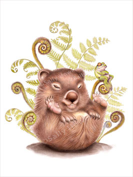 Fern Wombat Asleep Print