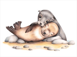 Seal Love Print