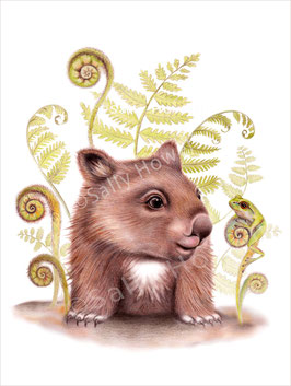 Fern Wombat Awake Print