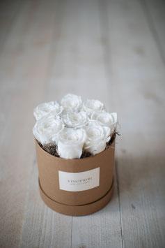Infity Rosen Box