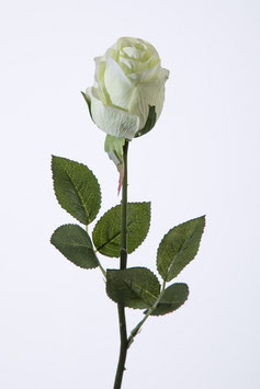 Single Rose Bud w/3 set of lvs 57cm