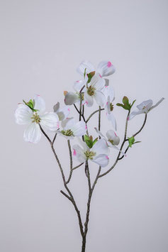 Dogwood Spray x3 70cm