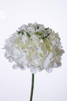 Hydrangea Stem 48cm