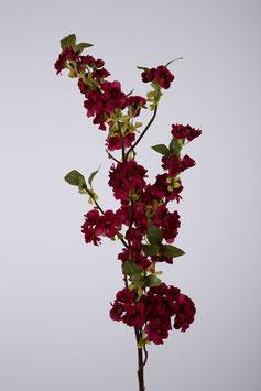 Cherry Blossom 130cm