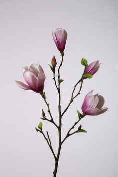 Magnolia Tree x4 Branch 95cm