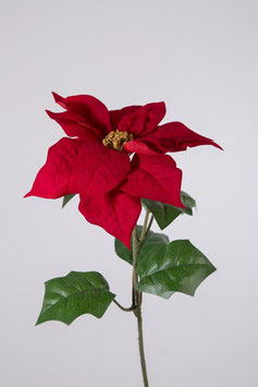 Velvet Poinsettia Single 65cm